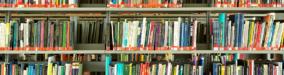 Hvad kan vi bruge bogbloggerne til?